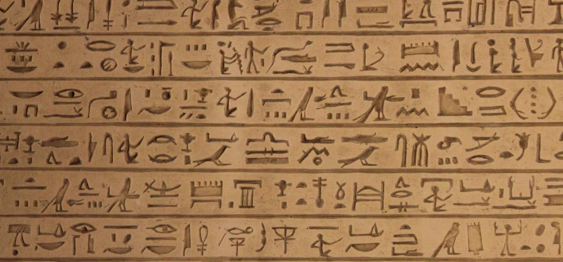 The Egyptian Hieroglyphic
