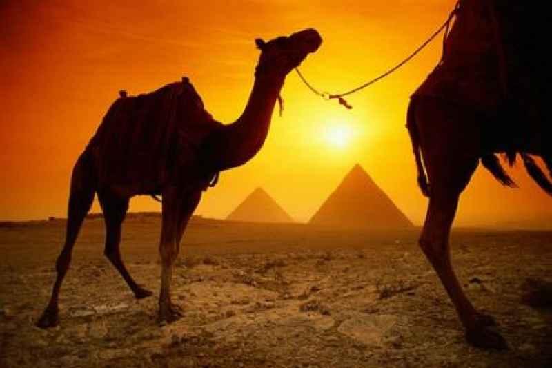 Excursion 03 Days Cairo + Alexandria over day